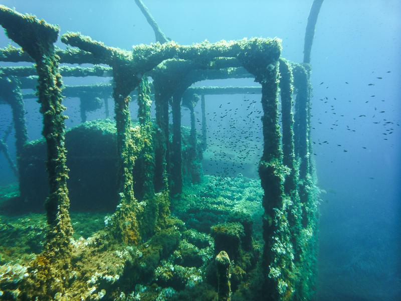 Epave dans la baie de Pinarello