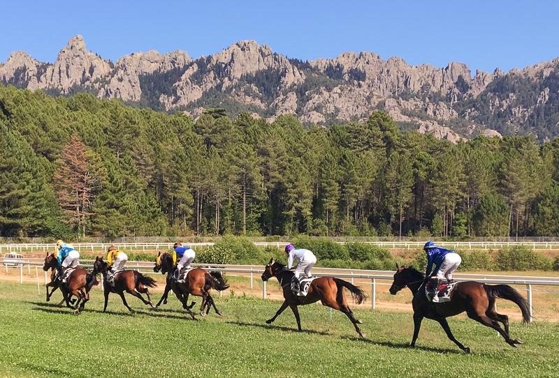 Champs de course à proximté de Pinarellu